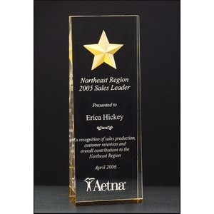 Constellation Series Etched Star Award
